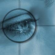 eye tracking blog reading