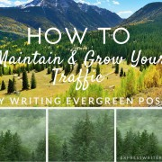 How to grow your traffic with evergreen content