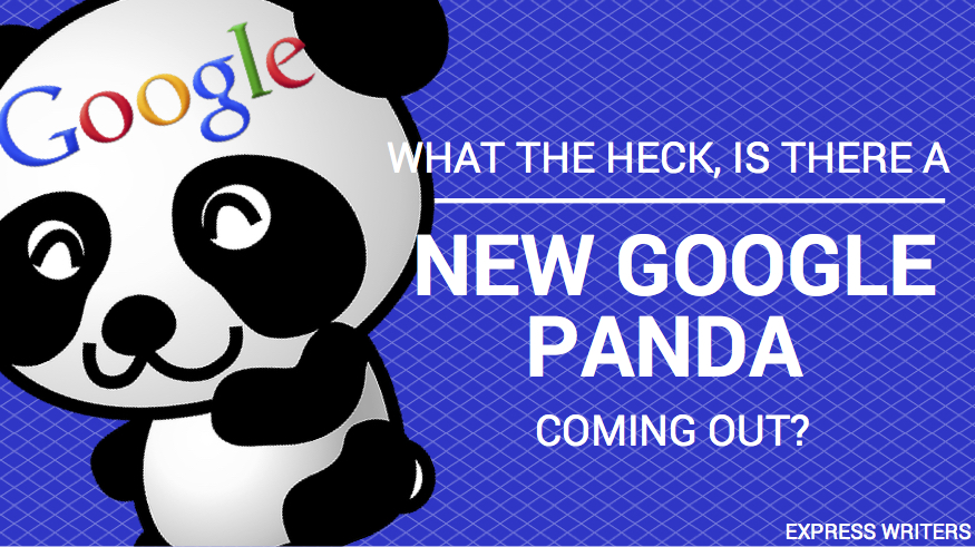 Don't be fooled - the Panda from Google isn't cute and cuddly.
