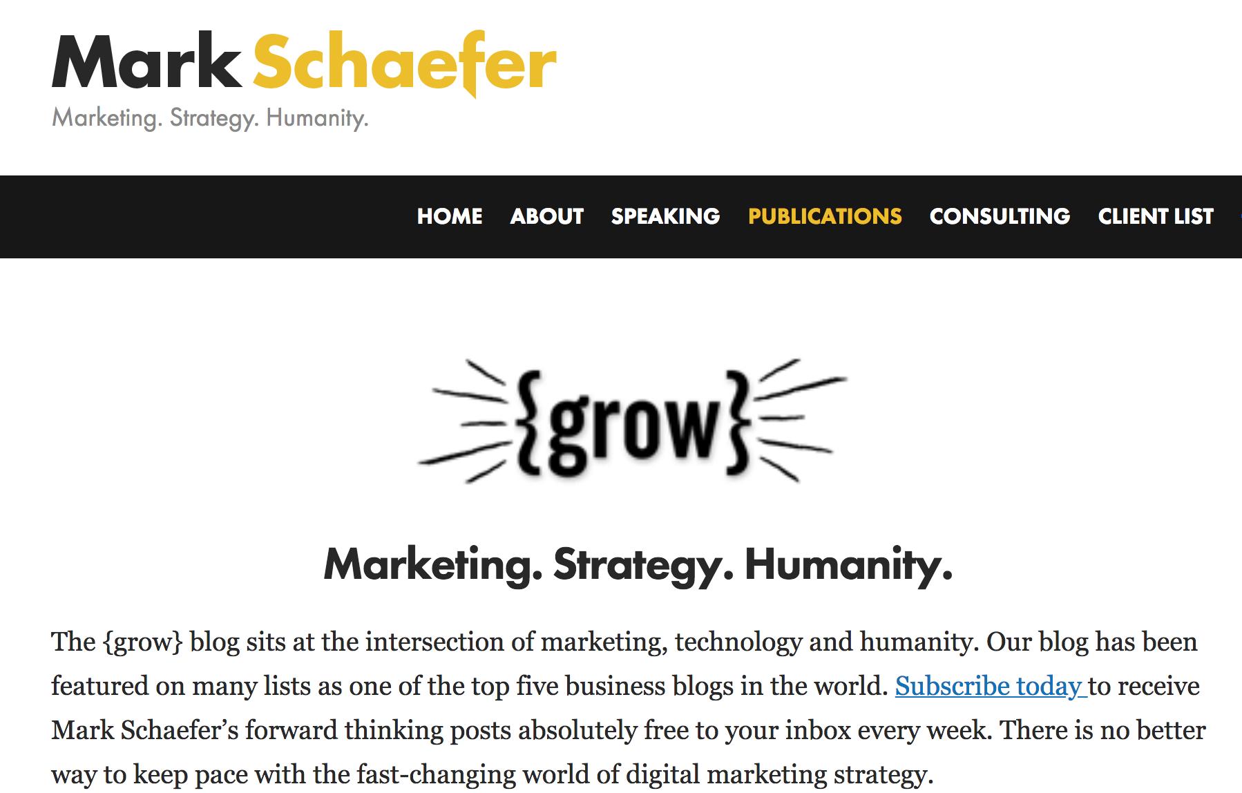 mark schaefer grow blog