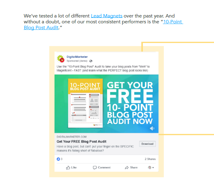 lead magnet content example